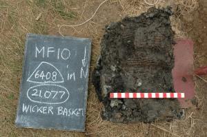 Basket - Just Excavated